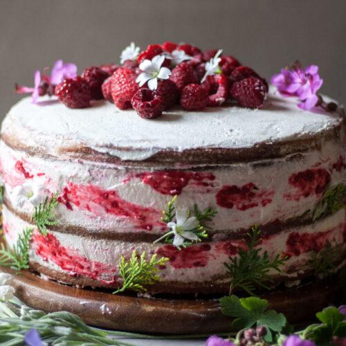 Food Photography Raspberry Lemon Naked Cake