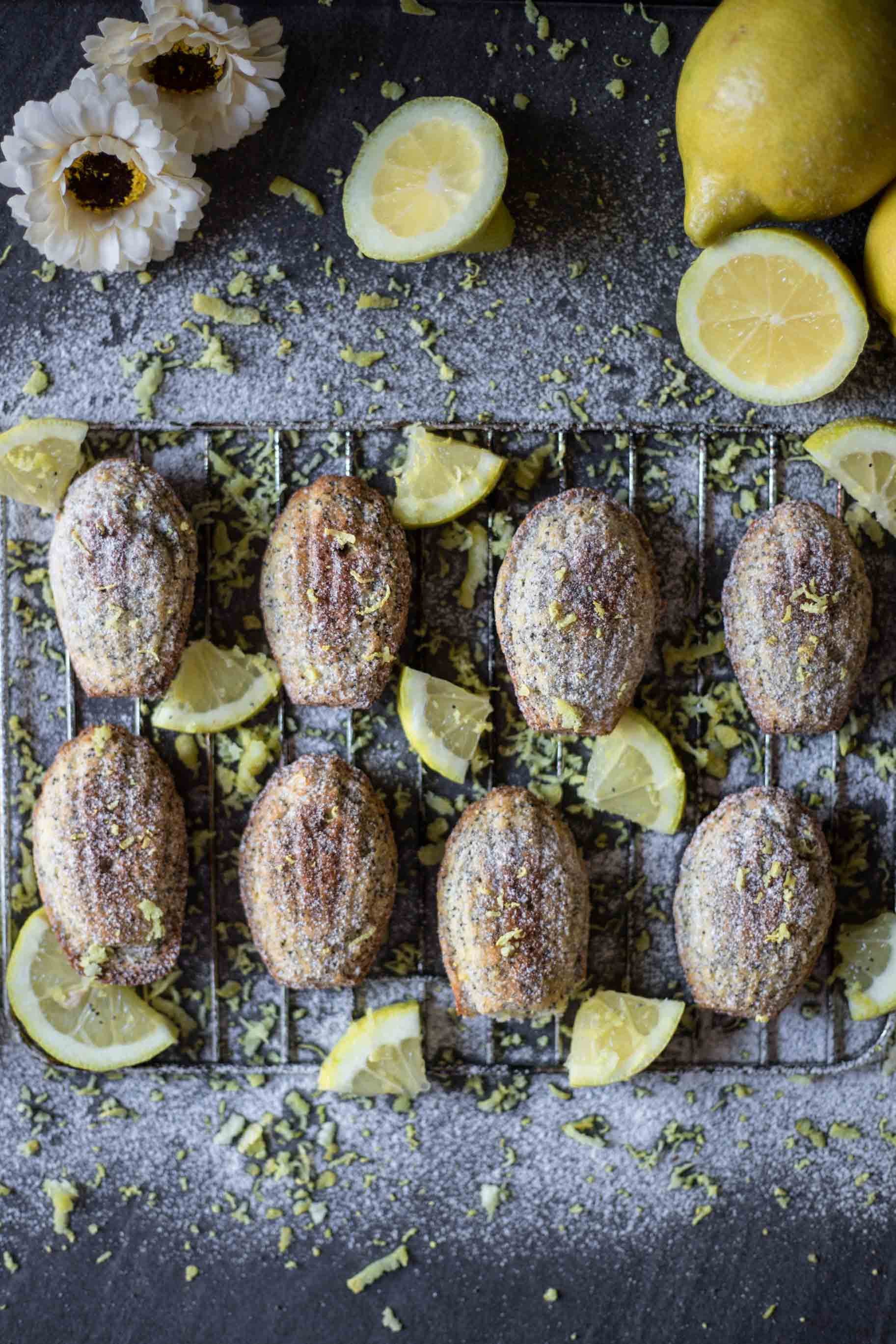 Low FODMAP Gluten-Free Lemon Poppyseed Madeleines. They are perfectly sweetened, tender, moist, buttery, soft and so flavorful.